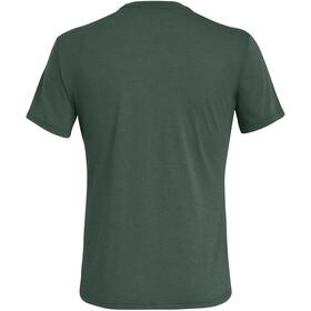 SALEWA Solidlogo Dry Camiseta Manga Corta Hombre, Oliva